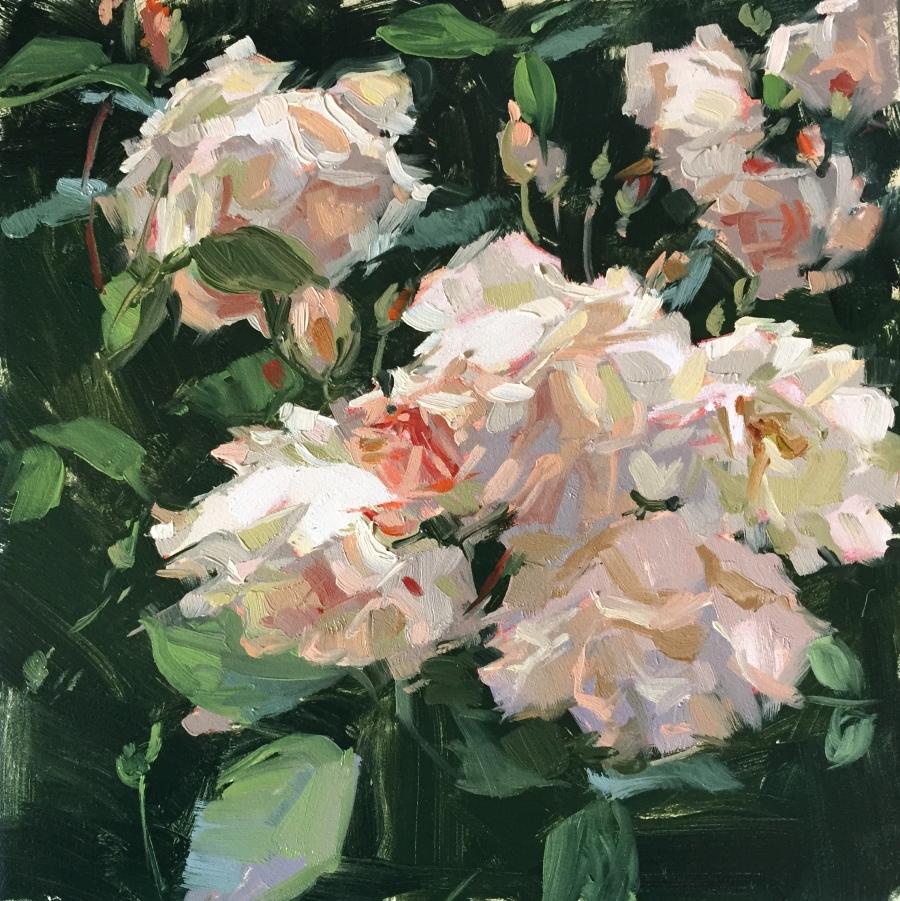 penelope rose 1